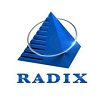 Radixweb Top Software Development Company