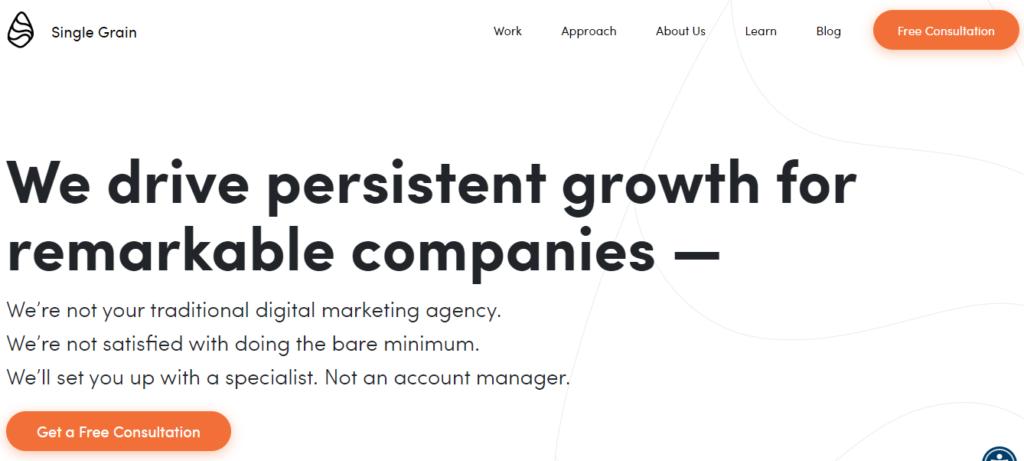 Single-Grain-top-saas-marketing-agency