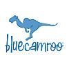 BlueCamroo best business management software